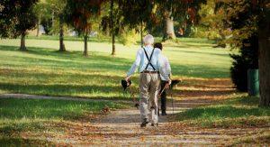 Älterer Mann mit Nordic Walking Sticks auf einem Waldweg